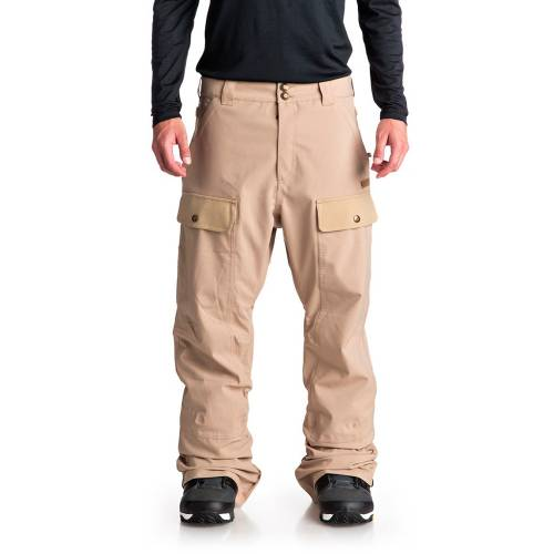 DC Asylum Snow Pants